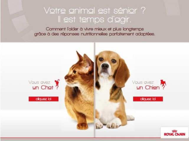 ROYAL-CANIN-Animal-snior--