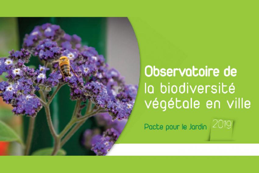 Observatoire de la Biodiversité Végétale en Ville : L'enquête 2019 révèle que les politiques « jardins et espaces végétalisés » sont une priorité pour les territoires
