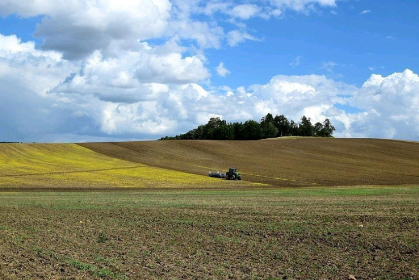 AXEMA : Selon l'Association Française des Acteurs Industriels de la filière des Agroéquipements et de l'Agroenvironnement, la reprise anticipée du marché en France et à l'international se confirme en 2018
