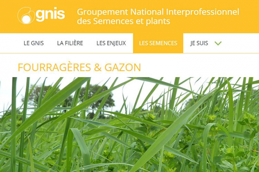 GNIS-Groupement National Interprofessionnel des Semences et plants : « Gazons et pelouses zéro phyto… Enherber pour moins désherber », découvrez conseils et témoignages en vidéo !