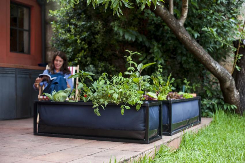 NOOCITY : Découvrez le potager urbain Low-Tech pour balcons et terrasses, un bac de culture avec un système de subirrigation intégré